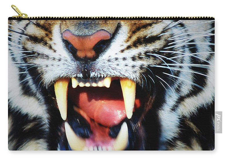 Snarling Carry-all Pouch featuring the photograph Bengal Tiger Panthera Tigris Tigris by Mike Hill