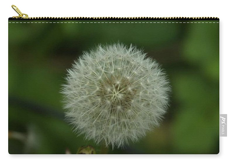Carry-all Pouch featuring the photograph Big Wish by Amber Hahn