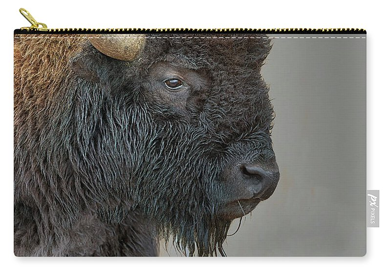 Bison Carry-all Pouch featuring the photograph Bison by Gary Langley