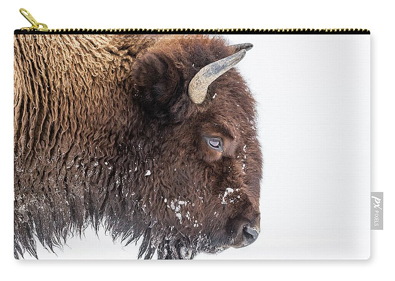 Vertebrate Carry-all Pouch featuring the photograph Bison In Winter by Kencanning
