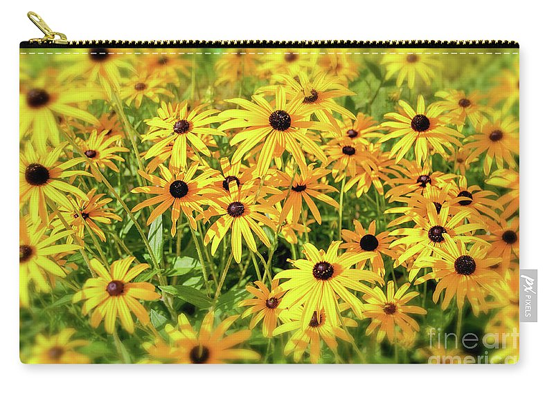 Black-eyed Susan Carry-all Pouch featuring the photograph Black Eyed Susans by Delphimages Photo Creations
