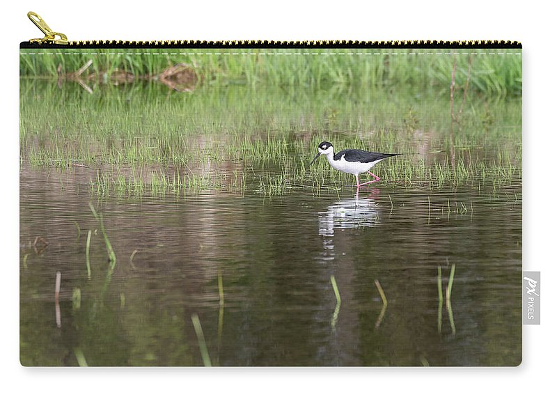 Black-necked Stilt (himantopus Mexicanus) Carry-all Pouch featuring the photograph Black-necked Stilt 2018-1 by Thomas Young