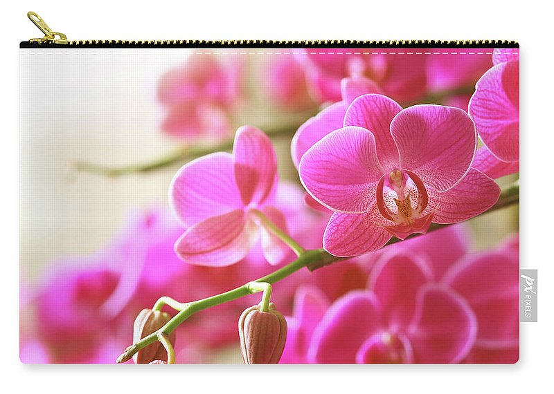 Environmental Conservation Carry-all Pouch featuring the photograph Blooming Pink Orchid On A Green Branch by Dreaming2004