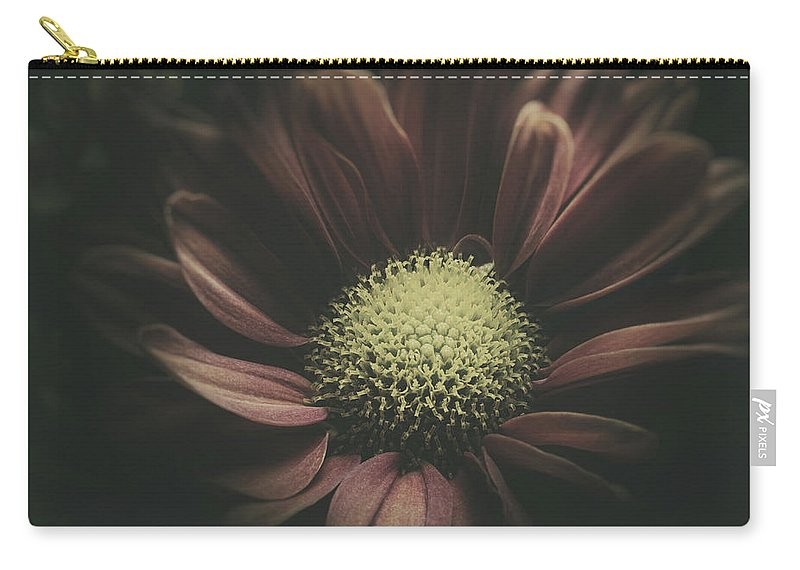 Daisy Carry-all Pouch featuring the photograph Blossom in the Darkness by Scott Norris