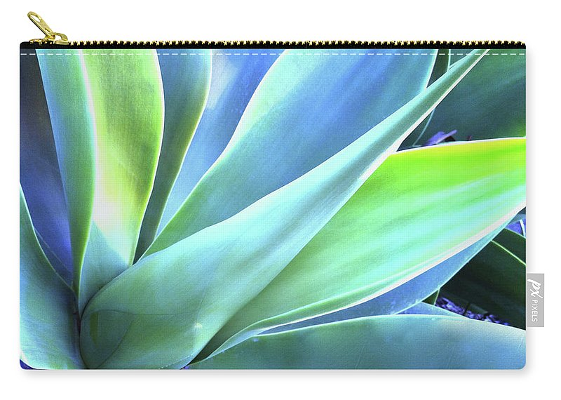 Agave Carry-all Pouch featuring the photograph Blue Agave by Denise Taylor