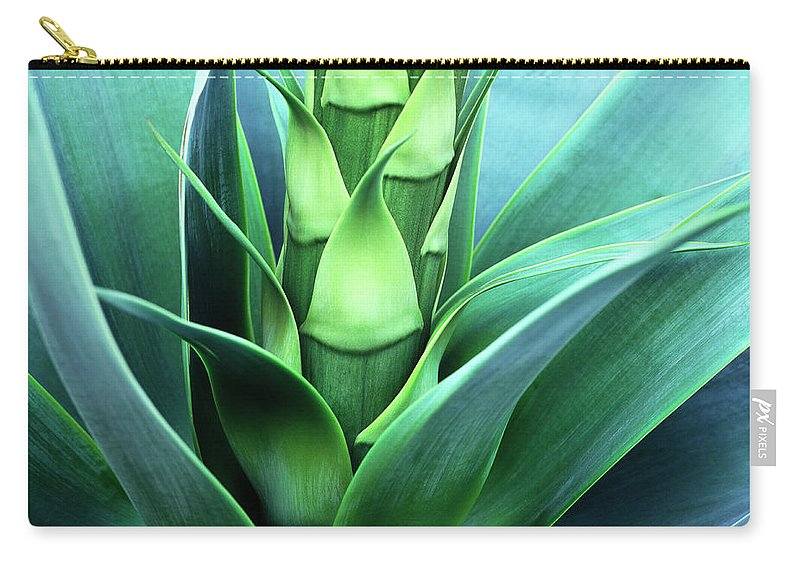 Agave Carry-all Pouch featuring the photograph Blue Agave by Oleg Moiseyenko