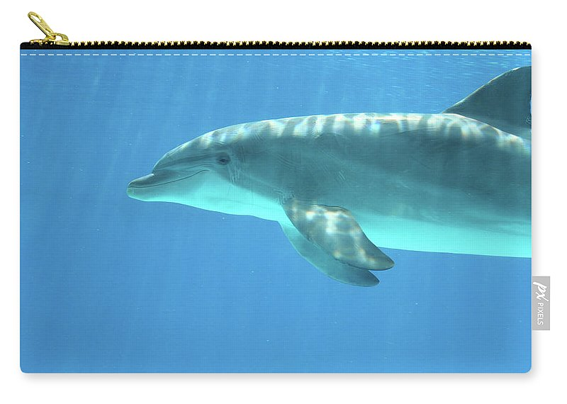 Underwater Carry-all Pouch featuring the photograph Bottlenose Dolphin by Anzeletti