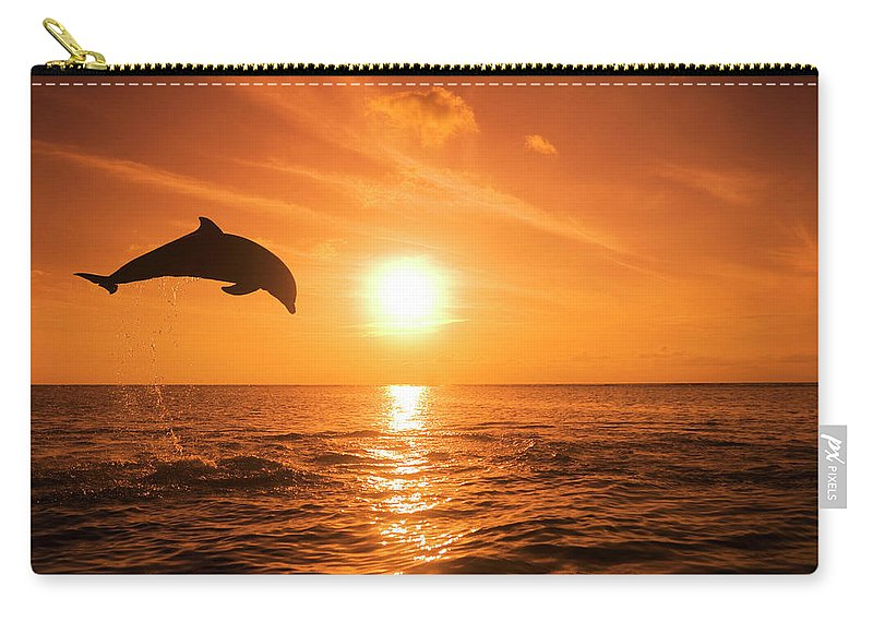 Orange Color Carry-all Pouch featuring the photograph Bottlenose Dolphin Tursiops Truncatus by Rene Frederick