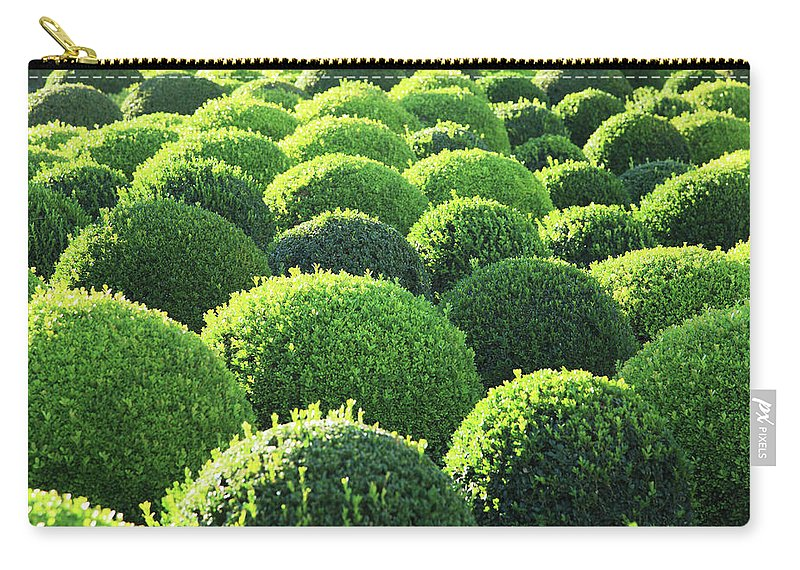 Tranquility Carry-all Pouch featuring the photograph Boxwood, Shape, Pattern by Hiroshi Higuchi