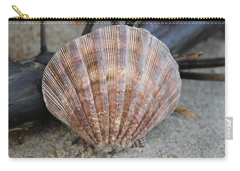 Shell Carry-all Pouch featuring the photograph Brown Cockle Shell And Driftwood 2 by Cathy Lindsey