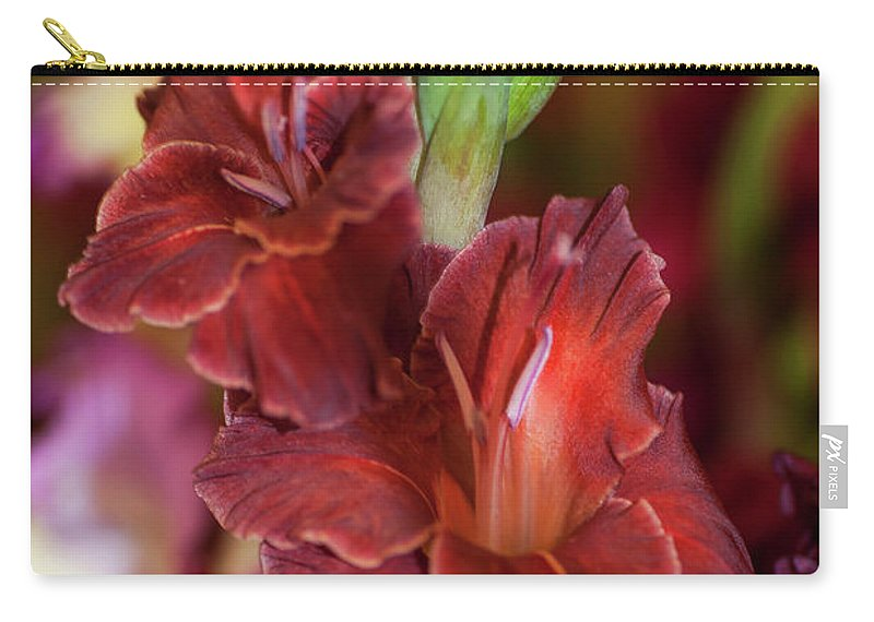 Jenny Rainbow Fine Art Photography Carry-all Pouch featuring the photograph Brown Jewel 5. The Beauty Of Gladiolus by Jenny Rainbow