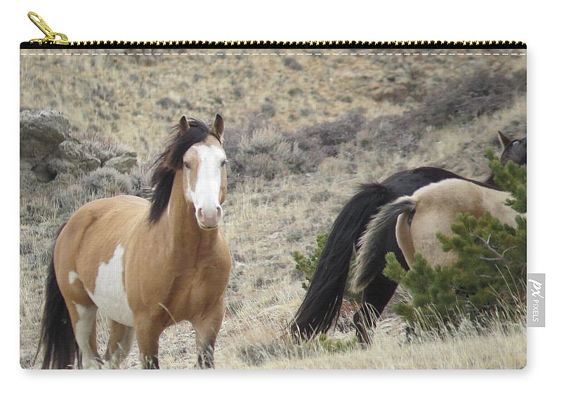 Buckskin Pinto Carry-all Pouch featuring the photograph Buckskin Pinto Stallion by Christi Chapman