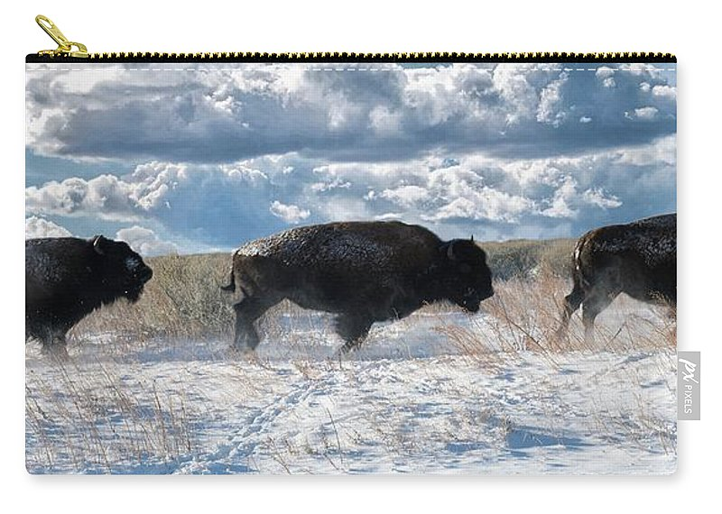 Nature Carry-all Pouch featuring the photograph Buffalo Charge. Bison Running, Ground Shaking When They Trampled Through Arsenal Wildlife Refuge by OLena Art Brand