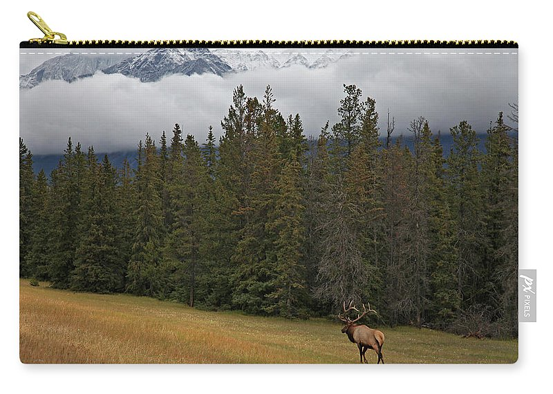 Snow Carry-all Pouch featuring the photograph Bull Elk In Meadow With Snow Covered by Guy Crittenden