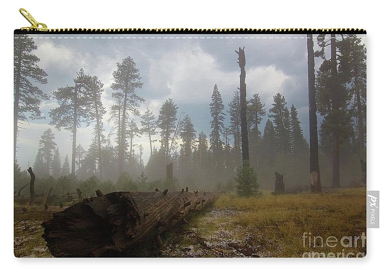 Burnt Carry-all Pouch featuring the photograph Burned Trees At Lassen Volcanic by Victor De Souza