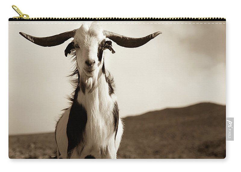 Landscape Carry-all Pouch featuring the photograph Cabra De Fuerteventura by Eliza Spatar