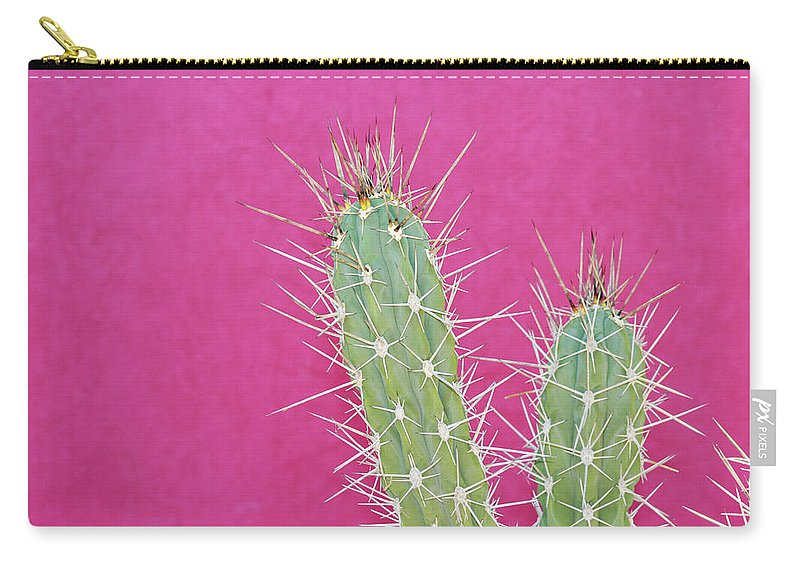 California Carry-all Pouch featuring the photograph Cactus Against A Bright Pink Wall by Tracy A. Flaming