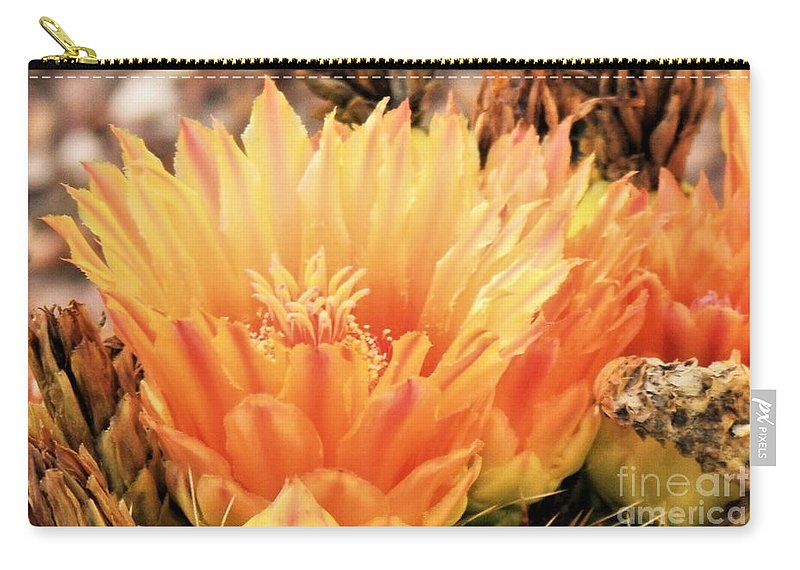 Cactus Flower Carry-all Pouch featuring the photograph Cactus Flower by Suzanne Wilkinson