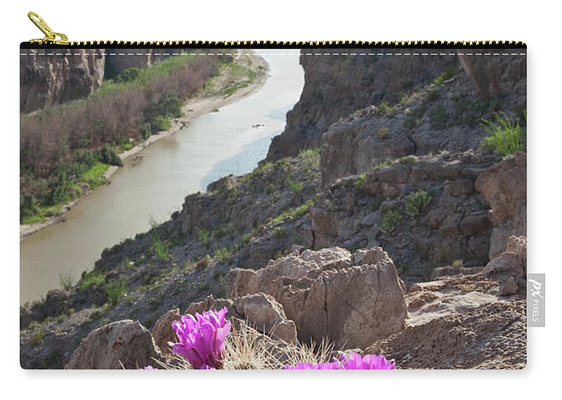 Chihuahua Desert Carry-all Pouch featuring the photograph Cactus Flowers Overlooking The Rio by Dhughes9