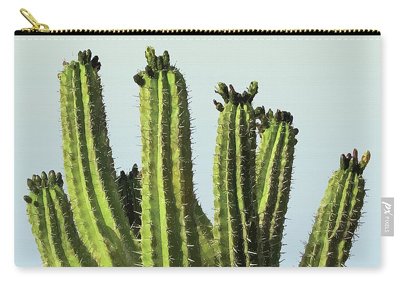 Cactus Carry-all Pouch featuring the mixed media Cactus - Minimal Cactus Poster - Desert, Tropical - Succulents Poster - Modern Wall Decor by Studio Grafiikka