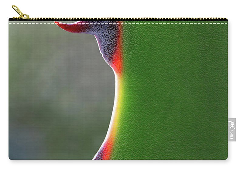 Needle Carry-all Pouch featuring the photograph Cactus by Patricia Fenn Gallery