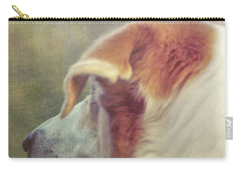 Dog Carry-all Pouch featuring the photograph Canine Salvation by JAMART Photography