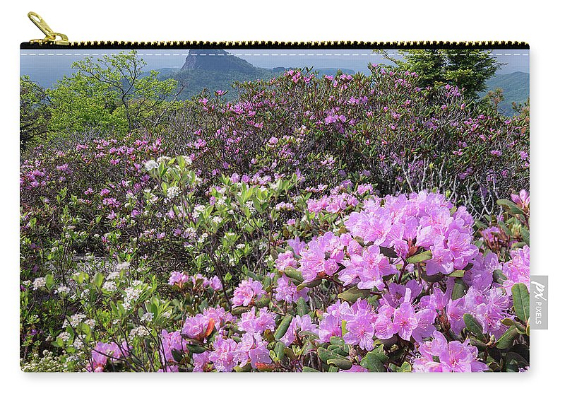 Catawba Rhododendron Carry-all Pouch featuring the photograph Catawba Rhododendron Table Rock by Mike Koenig