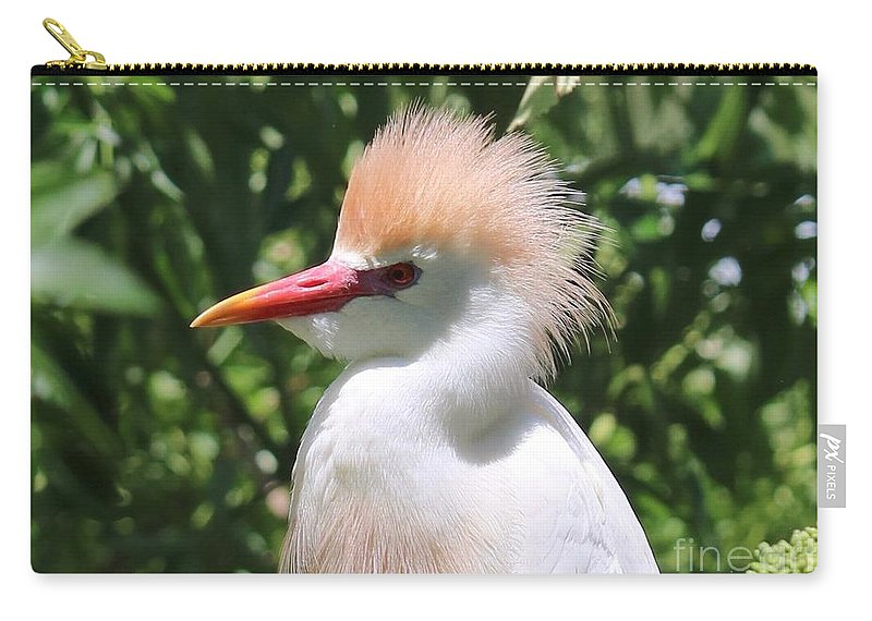 Cattle Egret Carry-all Pouch featuring the photograph Cattle Egret Profile by Carol Groenen