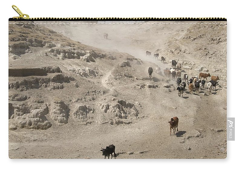 Horn Of Africa Carry-all Pouch featuring the photograph Cattle by Frankvandenbergh