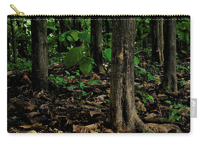 Trinidad Carry-all Pouch featuring the photograph Cedar Trees by Trinidad Dreamscape