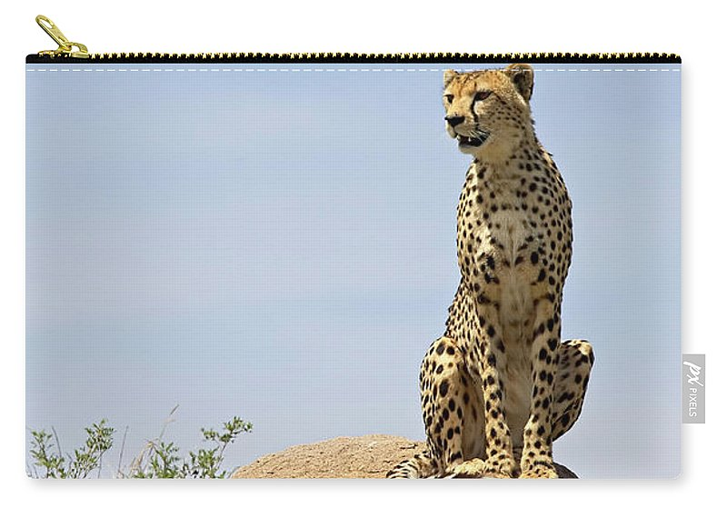Tanzania Carry-all Pouch featuring the photograph Cheetah Acinonyx Jubatus Sitting On A by James Hager / Robertharding