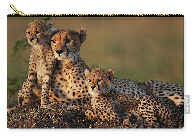 Kenya Carry-all Pouch featuring the photograph Cheetah Family by Gp232