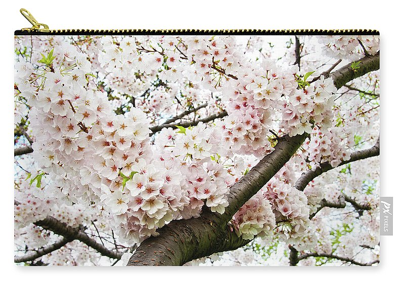 Outdoors Carry-all Pouch featuring the photograph Cherry Blossom by Sky Noir Photography By Bill Dickinson
