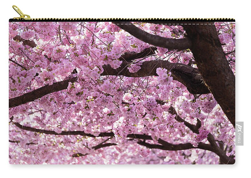 Cherry Carry-all Pouch featuring the photograph Cherry Blossom Trees by Nicklas Gustafsson