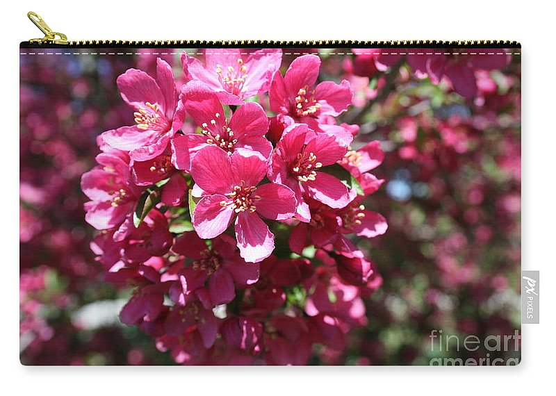 Highland Productions Llc  Darren Dwayne Frazier  Cherry Blossoms Bright Spring Day Carry-all Pouch featuring the photograph Cherry Blossoms 2019 Iv by Darren Dwayne Frazier