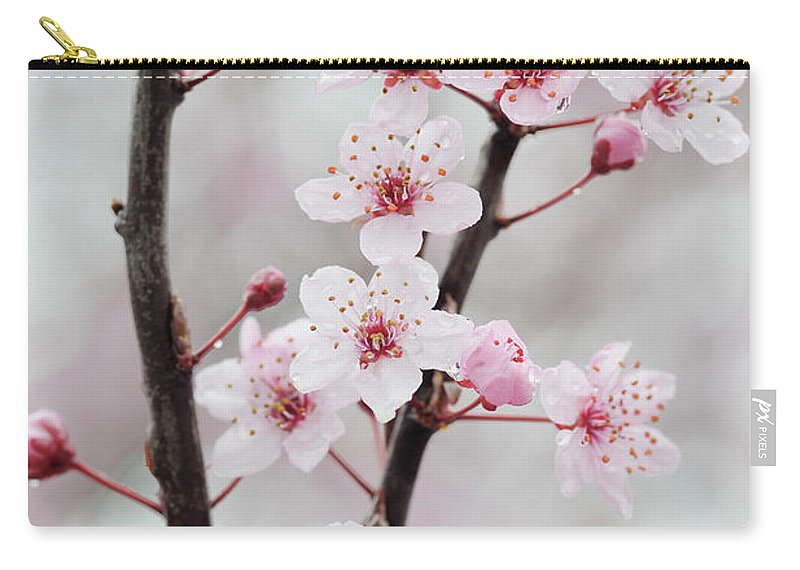 Cherry Carry-all Pouch featuring the photograph Cherry Plum Purple Plum Pink Flowers On by Martin Ruegner