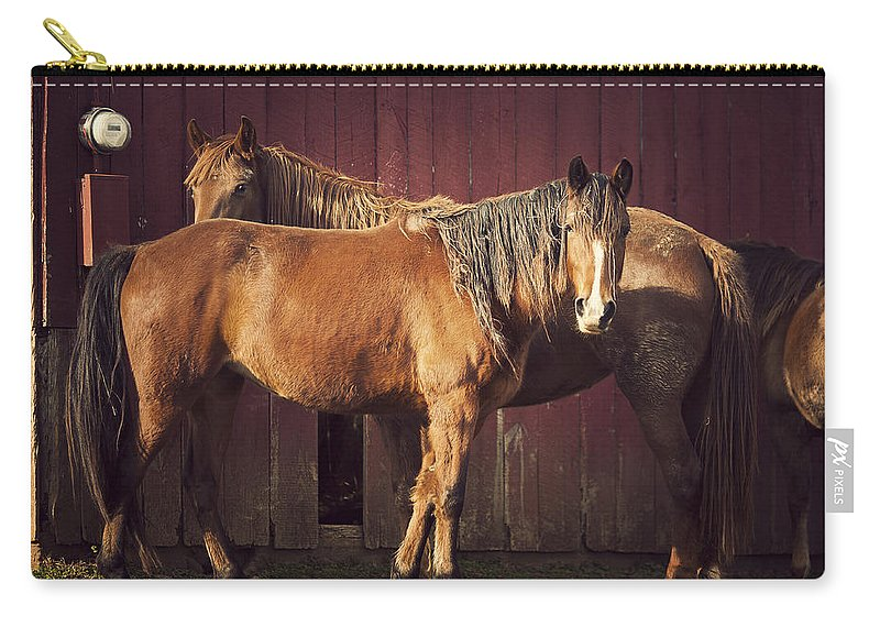 Horse Carry-all Pouch featuring the photograph Chestnut Horses by Thepalmer