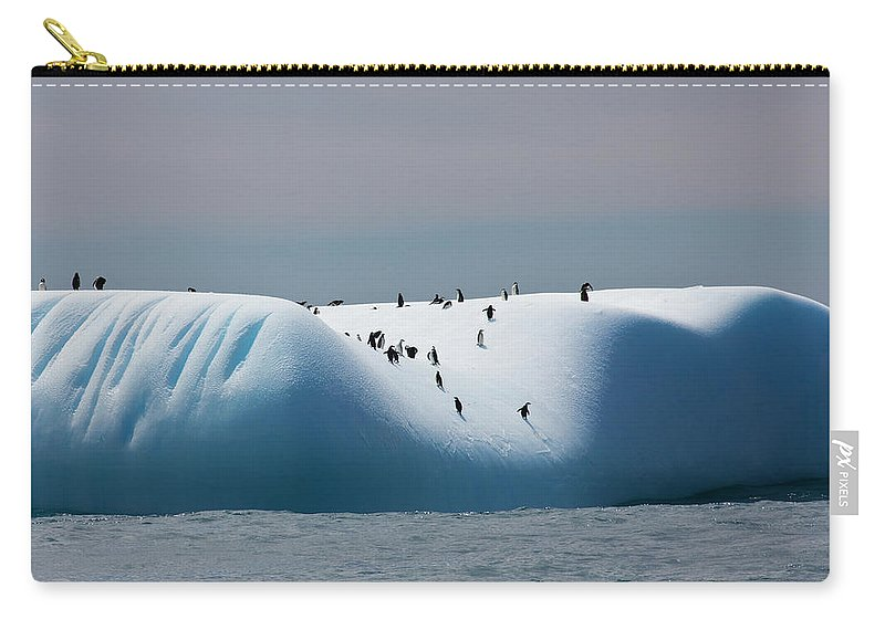 Scenics Carry-all Pouch featuring the photograph Chinstrap Penguins On Iceberg Off Of by Darrell Gulin