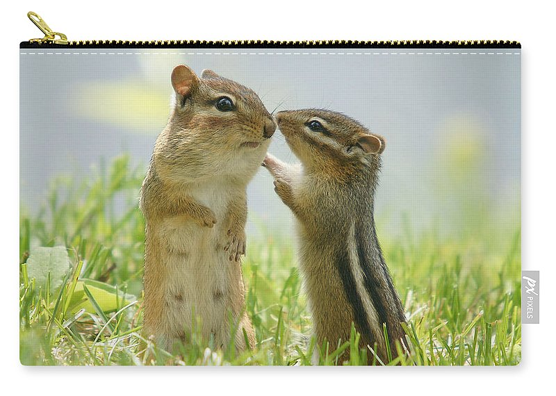 Grass Carry-all Pouch featuring the photograph Chipmunks In Grasses by Corinne Lamontagne