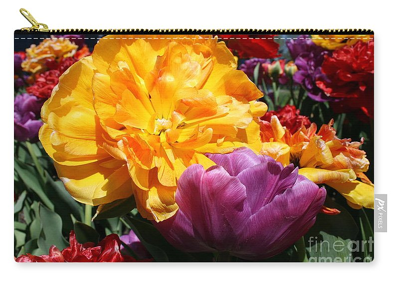 Highland Productions Llc  Darren Dwayne Frazier  Red Carry-all Pouch featuring the photograph Color Burst 2019 I by Darren Dwayne Frazier
