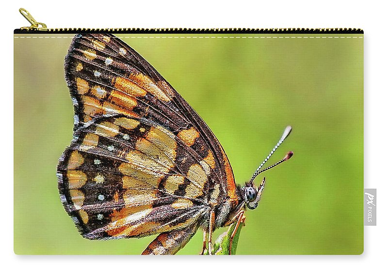 Venezuela Carry-all Pouch featuring the photograph Colorful Butterfly by Anthony Dezenzio