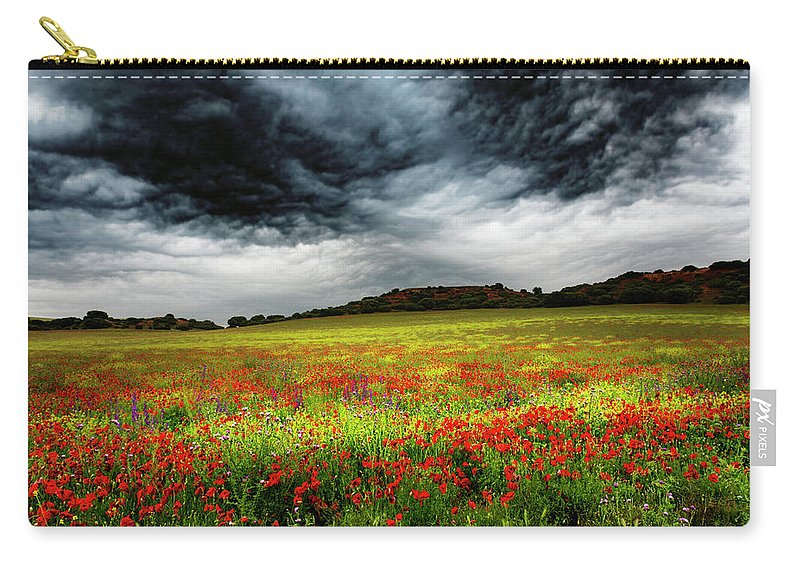 Nature Carry-all Pouch featuring the photograph Colorful Fields 1 by Vicente Sargues