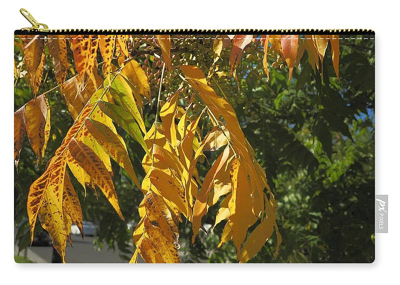 Landscape Carry-all Pouch featuring the photograph Colors Of The Neighborhood 14 by Richard Thomas