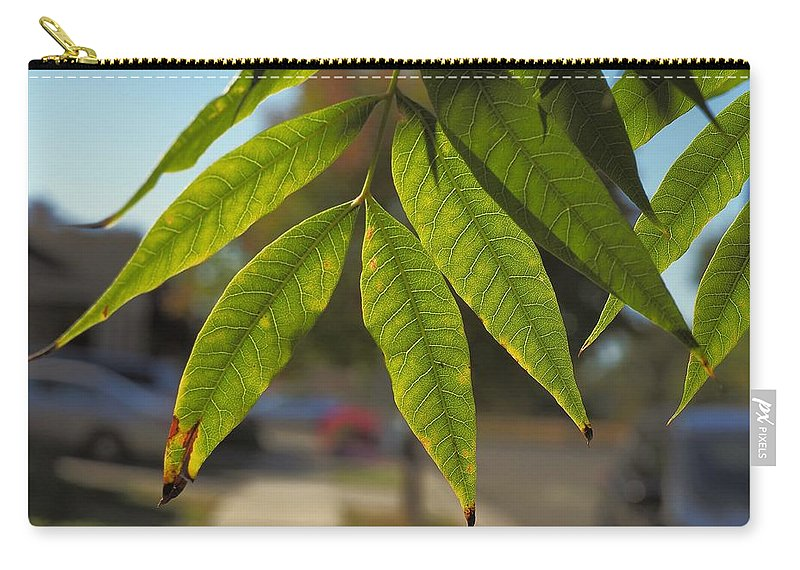 Landscape Carry-all Pouch featuring the photograph Colors Of The Neighborhood 15 by Richard Thomas