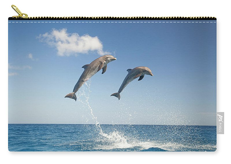 Aerodynamic Carry-all Pouch featuring the photograph Common Bottlenose Dolphins Tursiops by Mike Hill