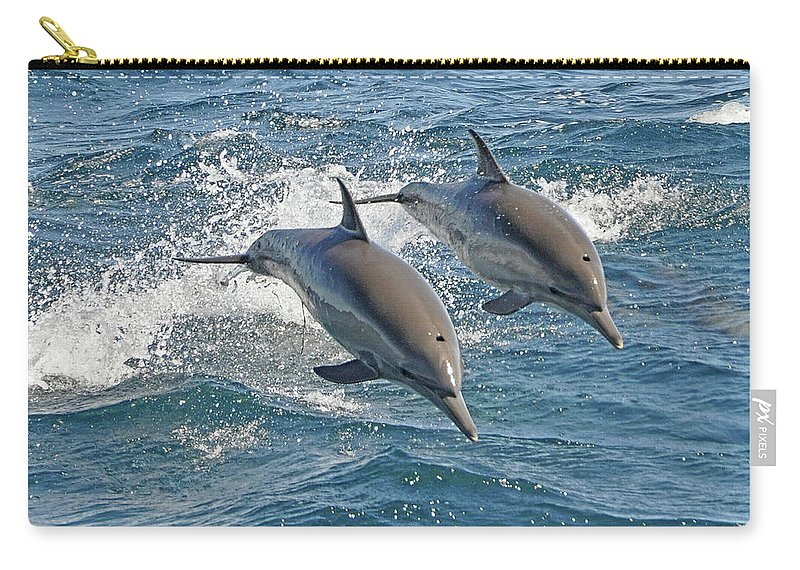 Diving Into Water Carry-all Pouch featuring the photograph Common Dolphins Leaping by Tim Melling