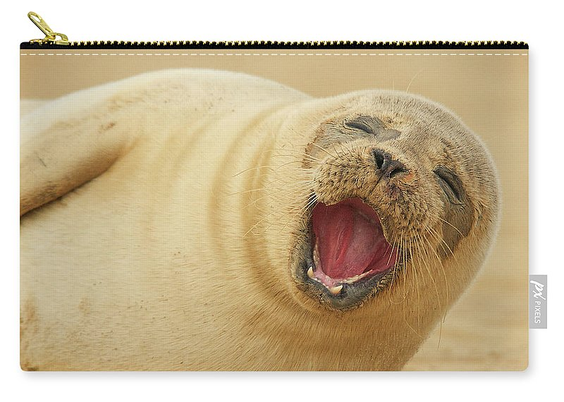 Animal Themes Carry-all Pouch featuring the photograph Common Seal by Copyright Alex Berryman
