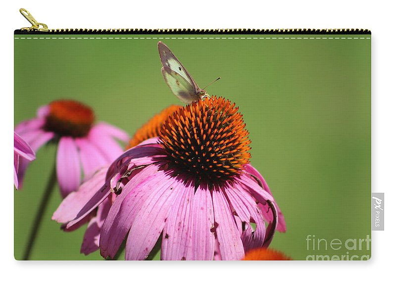Butterfly Carry-all Pouch featuring the photograph Cone Flower Butterfly At Rest by Julie Geraci