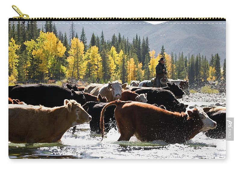 People Carry-all Pouch featuring the photograph Cowboy Herding Cattle Across River by Design Pics/carson Ganci