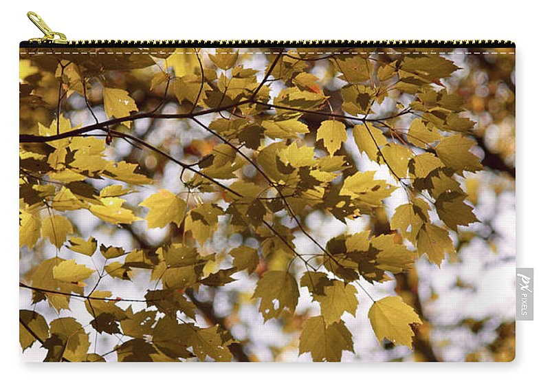 Autumn Carry-all Pouch featuring the photograph Cozy Fall Day by Carol Groenen